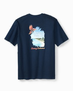Big & Tall Been There Drone That T-Shirt
